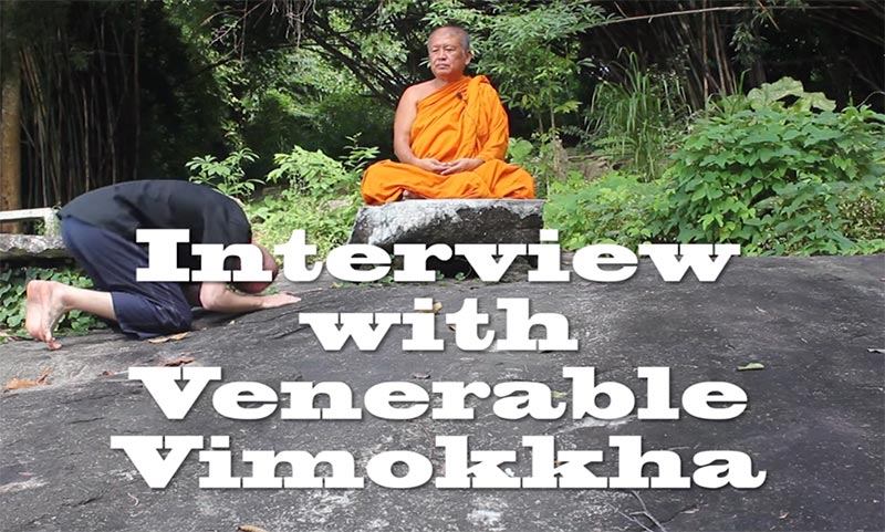 wywiad-vimokkha